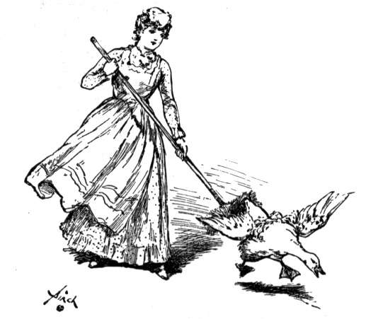woman shooing goose